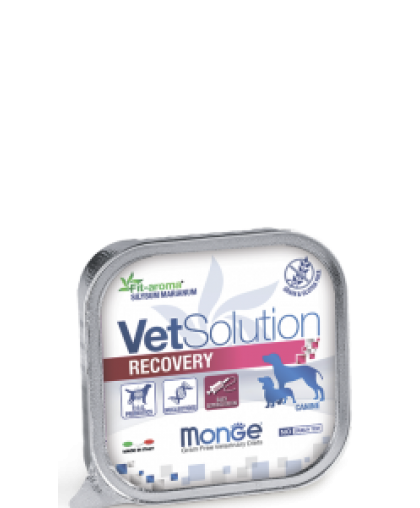 Monge VetSolution Dog Recovery влажная диета для собак Рекавери 150 г